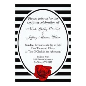 Black & White Stripes With Rose