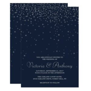 Elegant Navy & Silver Falling Stars Wedding