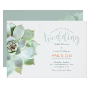 Succulent Garden Cactus Wedding
